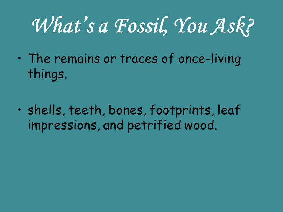 Whats a Fossil, You Ask? The remains or traces of once-living things. shells, teeth, bones, footprints, leaf impressions, and petrified wood.