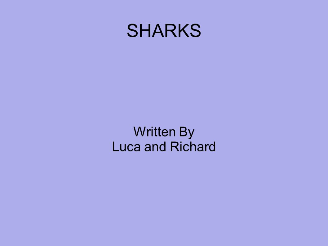 SHARKS Written By Luca and Richard