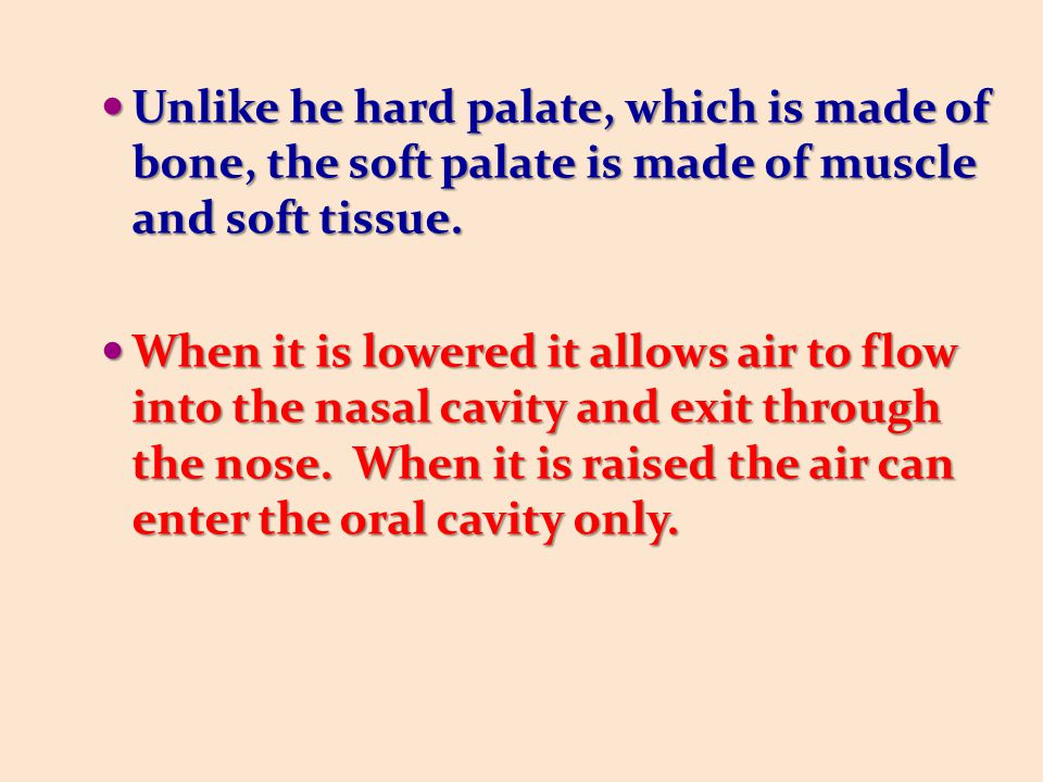Unlike he hard palate, which is made of bone, the soft palate is made of muscle and soft tissue. Unlike he hard palate, which is made of bone, the sof