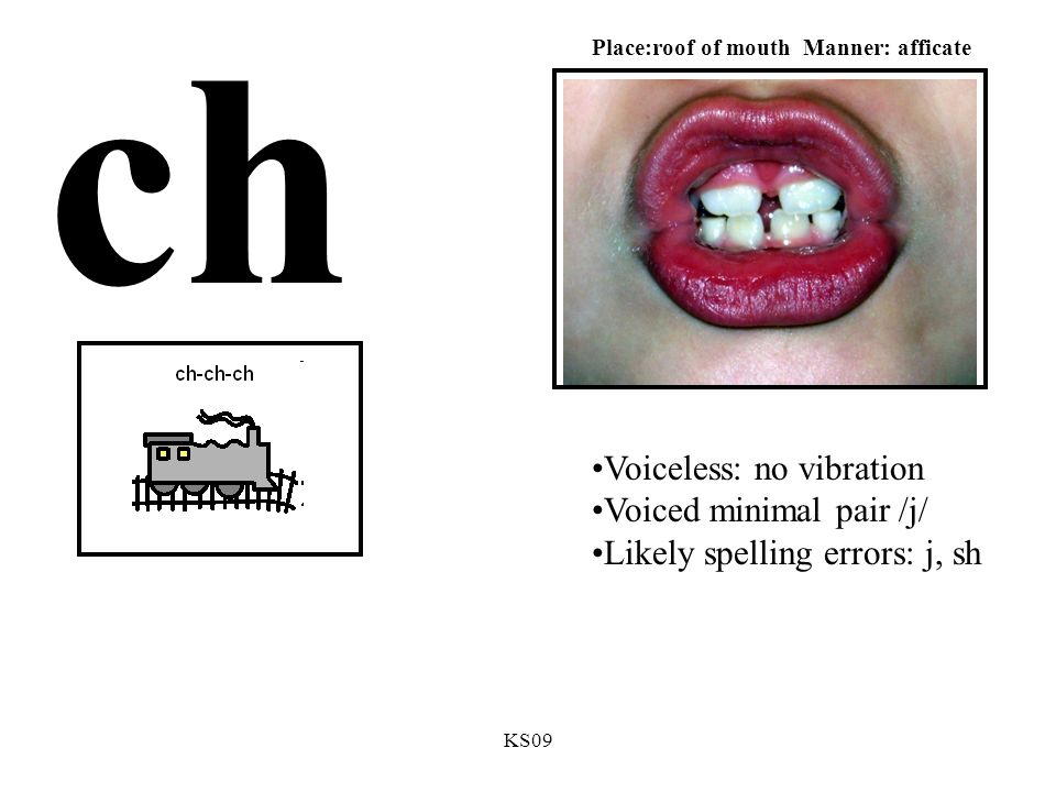 KS09 ch Voiceless: no vibration Voiced minimal pair /j/ Likely spelling errors: j, sh Place:roof of mouth Manner: afficate