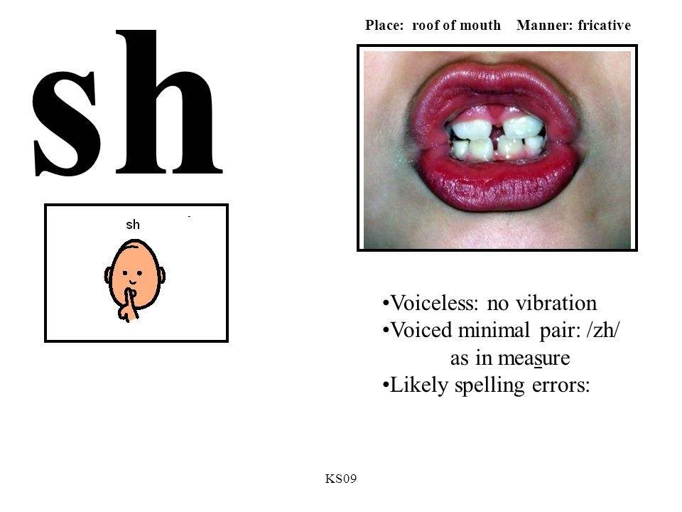 KS09 sh Voiceless: no vibration Voiced minimal pair: /zh/ as in measure Likely spelling errors: Place: roof of mouth Manner: fricative