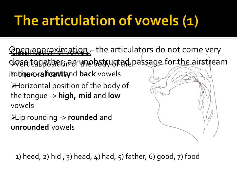 Classification of vowels: Vertical position of the body of the tongue -> front and back vowels Horizontal position of the body of the tongue -> high,