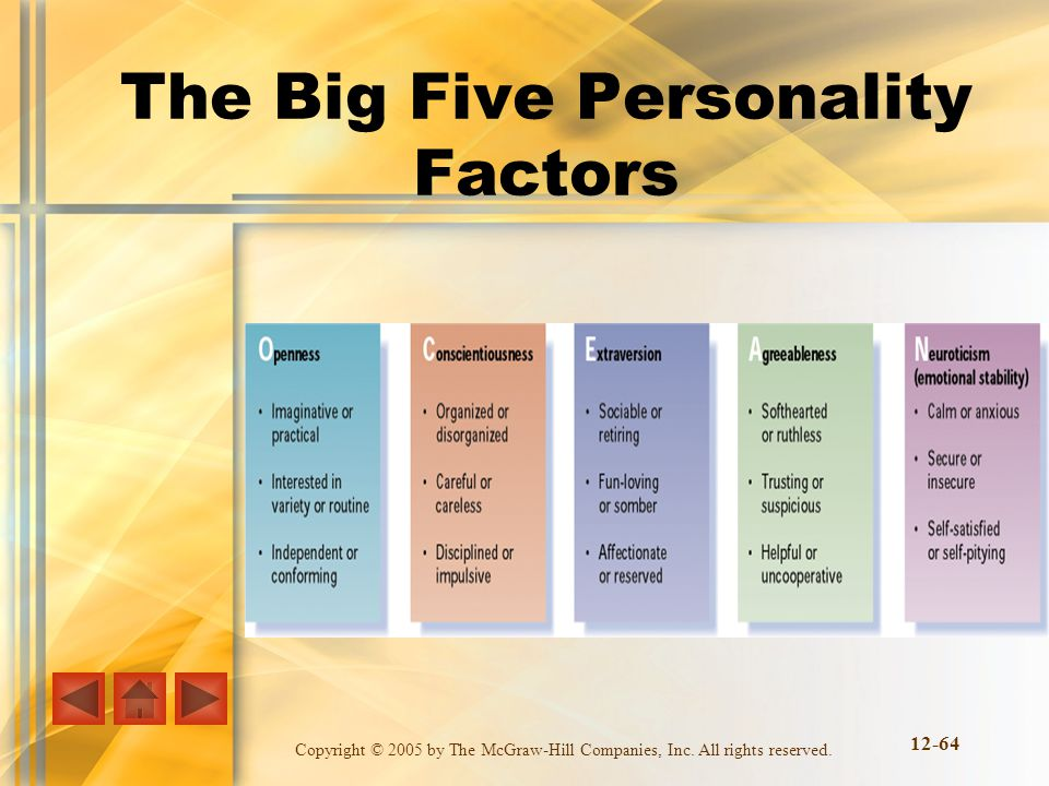 Copyright © 2005 by The McGraw-Hill Companies, Inc. All rights reserved. 12-64 The Big Five Personality Factors