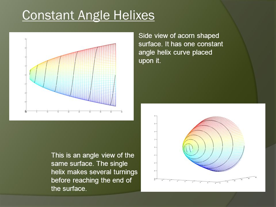 Constant Angle Helixes Side view of acorn shaped surface.