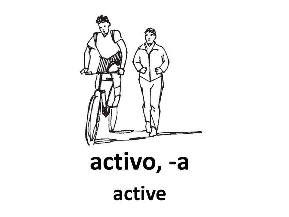 activo, -a active