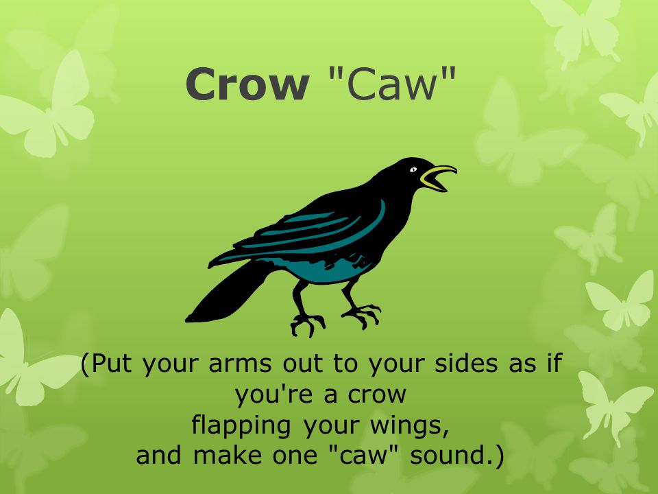 Crow Caw (Put your arms out to your sides as if you re a crow flapping your wings, and make one caw sound.)