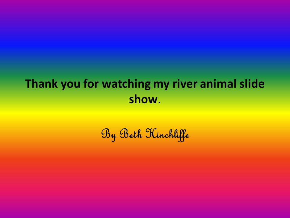 Thank you for watching my river animal slide show. By Beth Hinchliffe