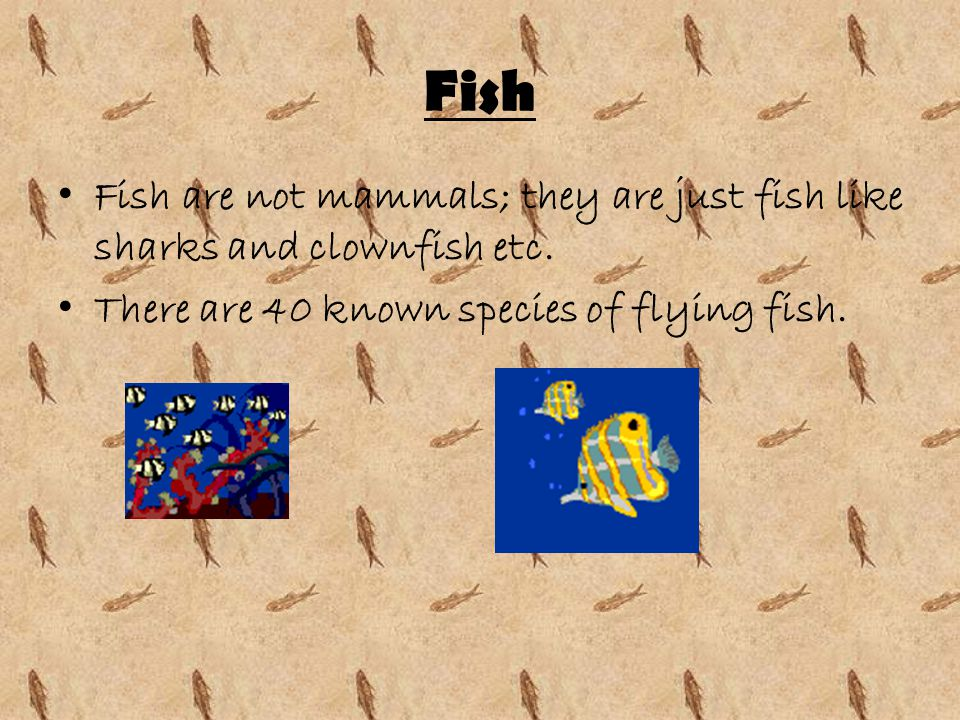 Fish Fish are not mammals; they are just fish like sharks and clownfish etc.