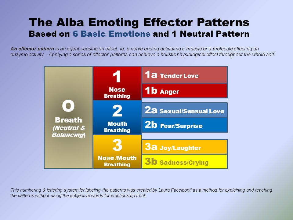 The Alba Emoting Effector Patterns Based on 6 Basic Emotions and 1 Neutral Pattern O Breath (Neutral & Balancing) 1 Nose Breathing 2 Mouth Breathing 3