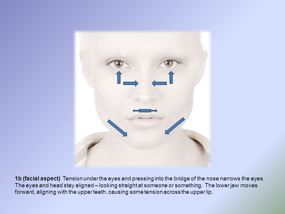 1b (facial aspect) Tension under the eyes and pressing into the bridge of the nose narrows the eyes. The eyes and head stay aligned – looking straight