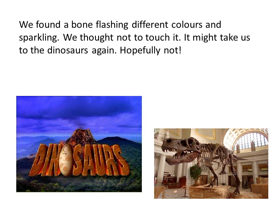 We found a bone flashing different colours and sparkling.