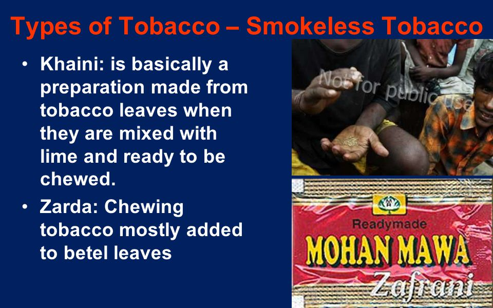 8 Types of Tobacco – Smokeless Tobacco Khaini: is basically a preparation made from tobacco leaves when they are mixed with lime and ready to be chewe