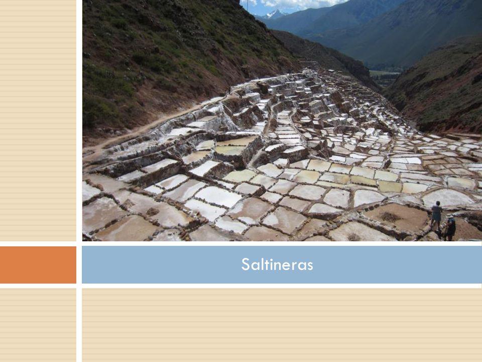 Saltineras