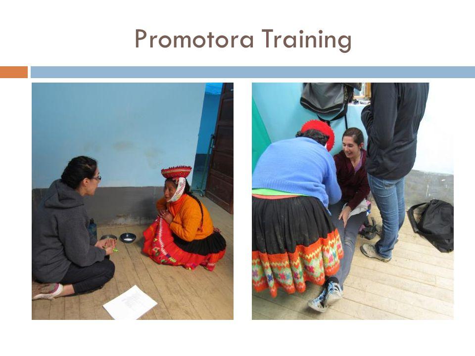 Promotora Training