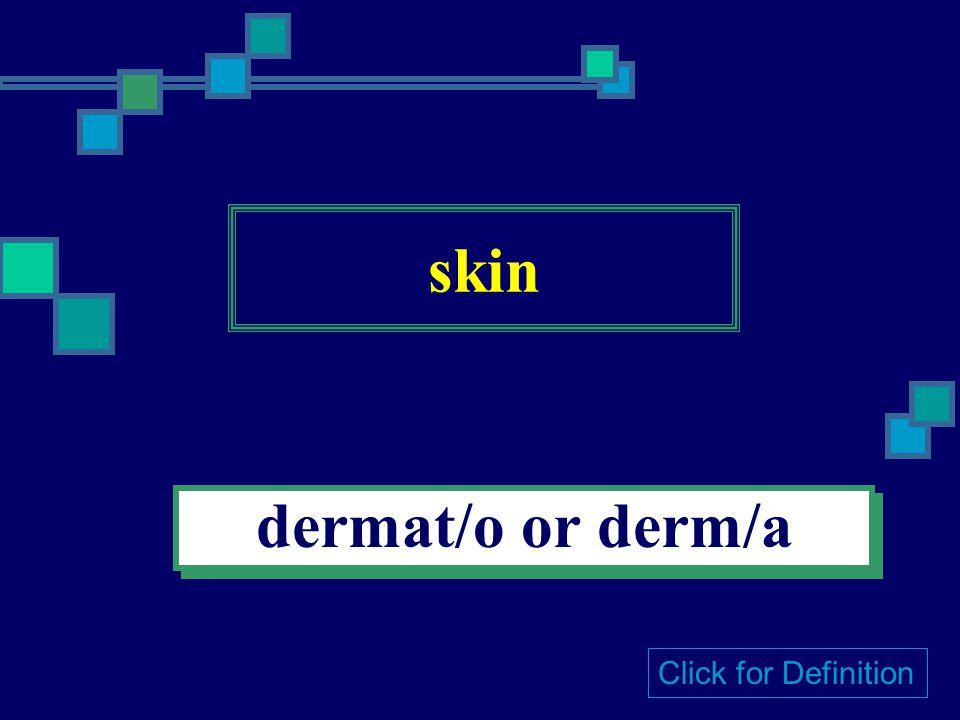 skin dermat/o or derm/a Click for Definition