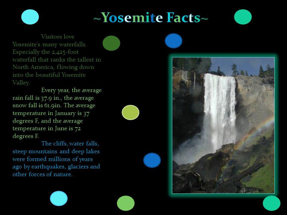 Visitors love Yosemites many waterfalls.