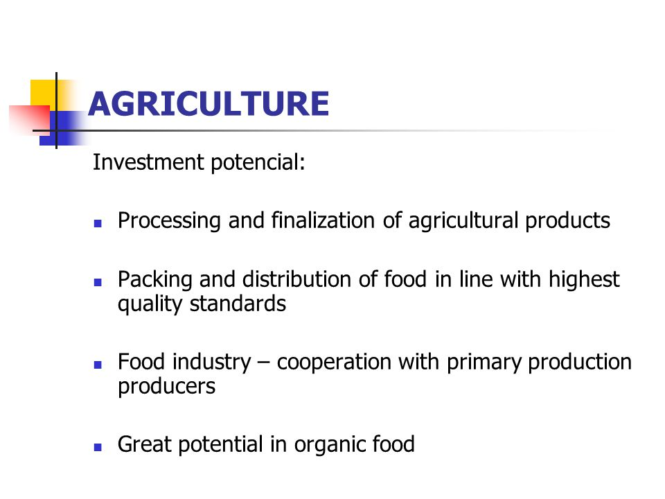 AGRICULTURE Investment potencial: Processing and finalization of agricultural products Packing and distribution of food in line with highest quality standards Food industry – cooperation with primary production producers Great potential in organic food