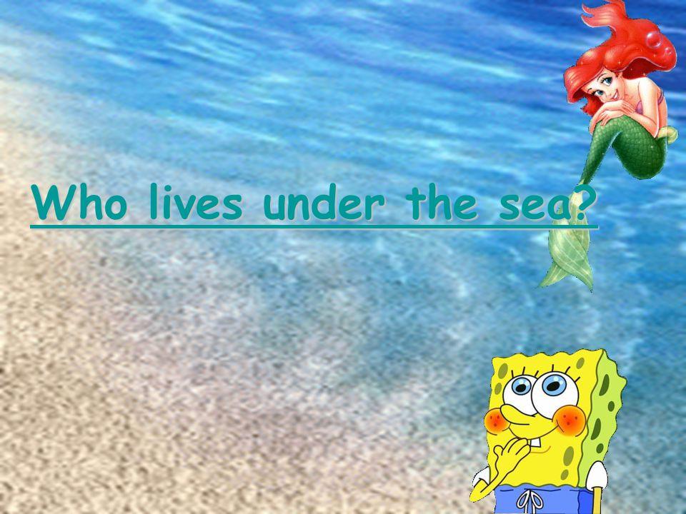 Who lives under the sea? Who lives under the sea?