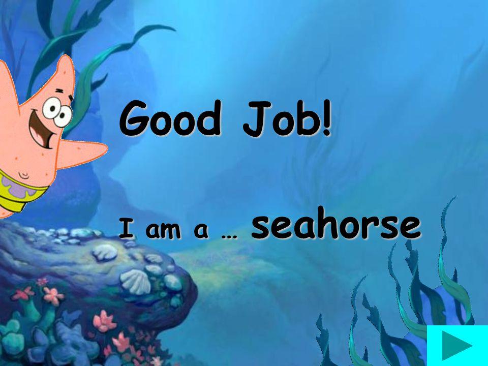 Good Job! I am a … seahorse