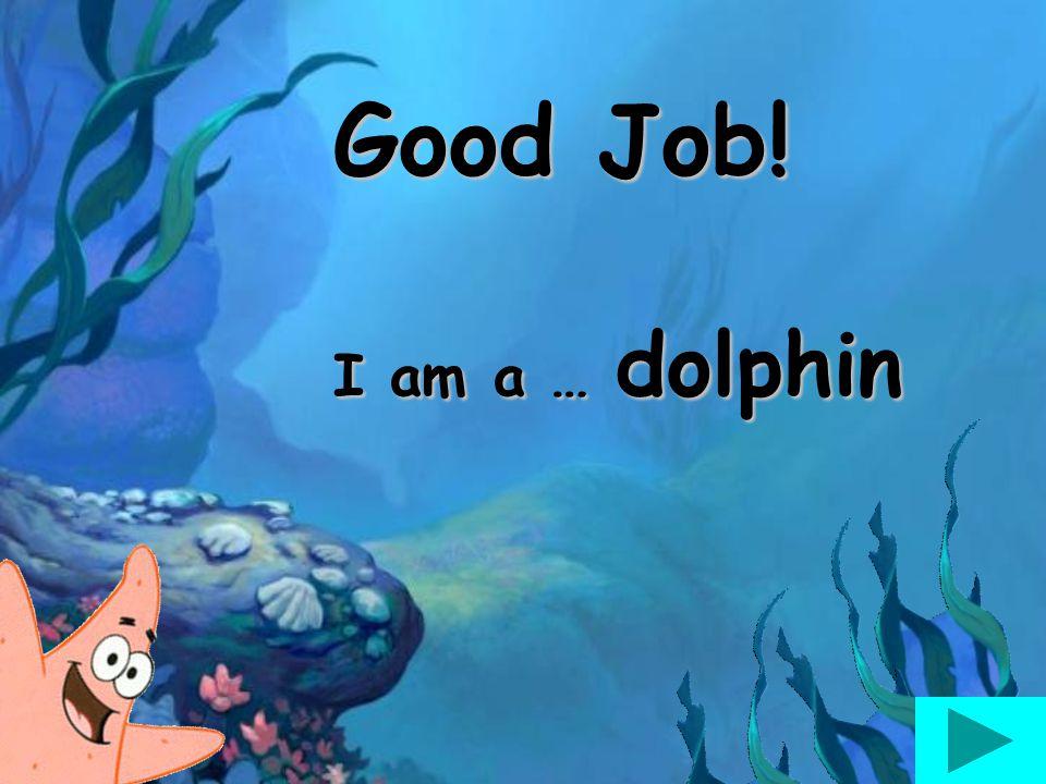 Good Job! I am a … dolphin