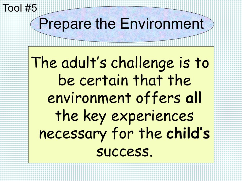 Prepare the Environment The adults challenge is to be certain that the environment offers all the key experiences necessary for the childs success.