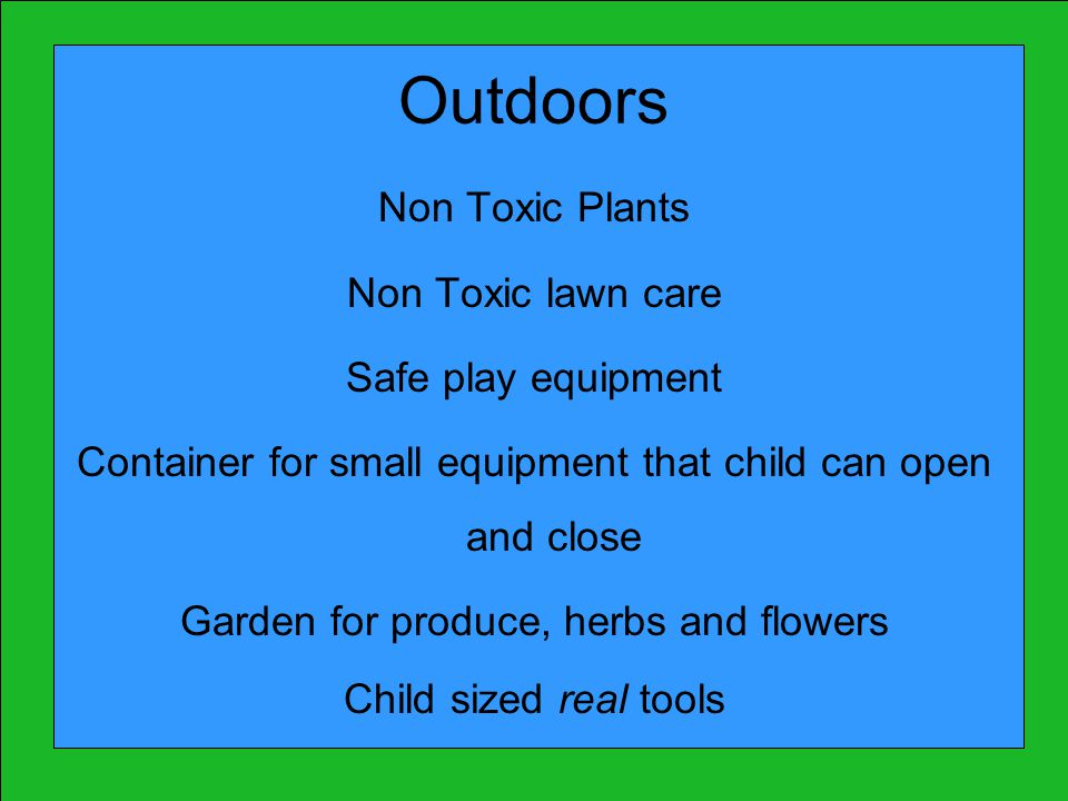 Outdoors Non Toxic Plants Non Toxic lawn care Safe play equipment Container for small equipment that child can open and close Garden for produce, herbs and flowers Child sized real tools