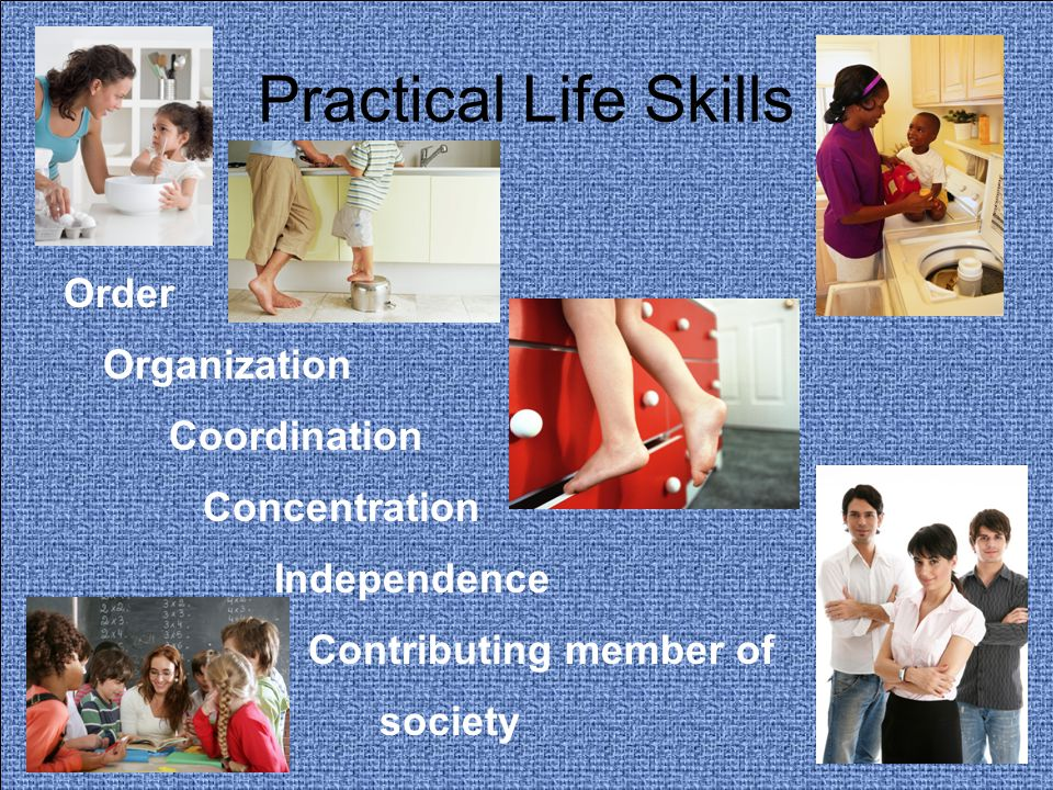 Practical Life Skills Order Organization Coordination Concentration Independence Contributing member of society