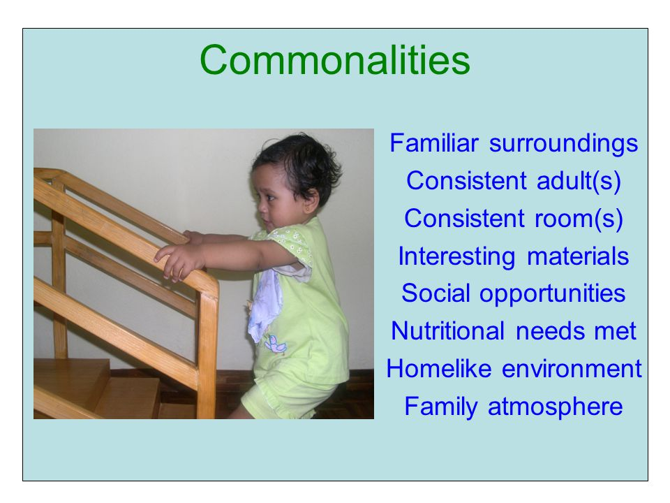 Commonalities Familiar surroundings Consistent adult(s) Consistent room(s) Interesting materials Social opportunities Nutritional needs met Homelike environment Family atmosphere