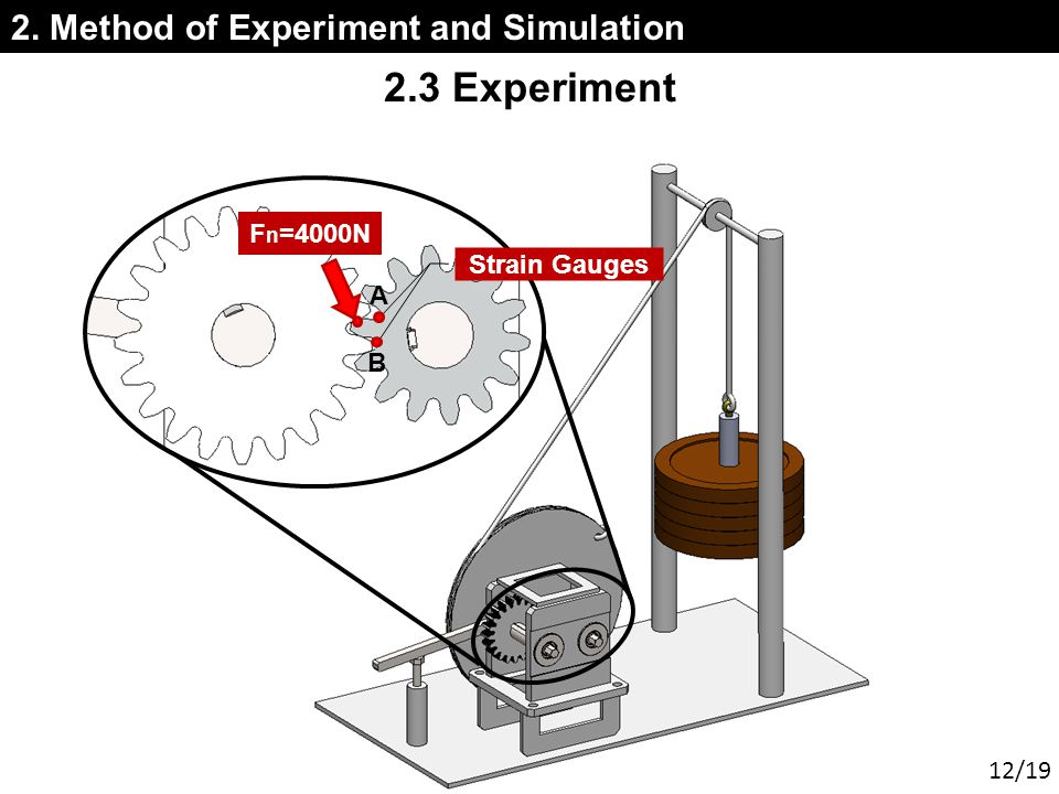 2. Method of Experiment and Simulation 2.3 Experiment Strain Gauges A B F n =4000N 12/19