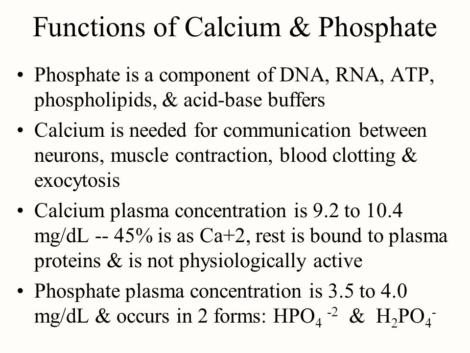 Functions of Calcium & Phosphate Phosphate is a component of DNA, RNA, ATP, phospholipids, & acid-base buffers Calcium is needed for communication bet