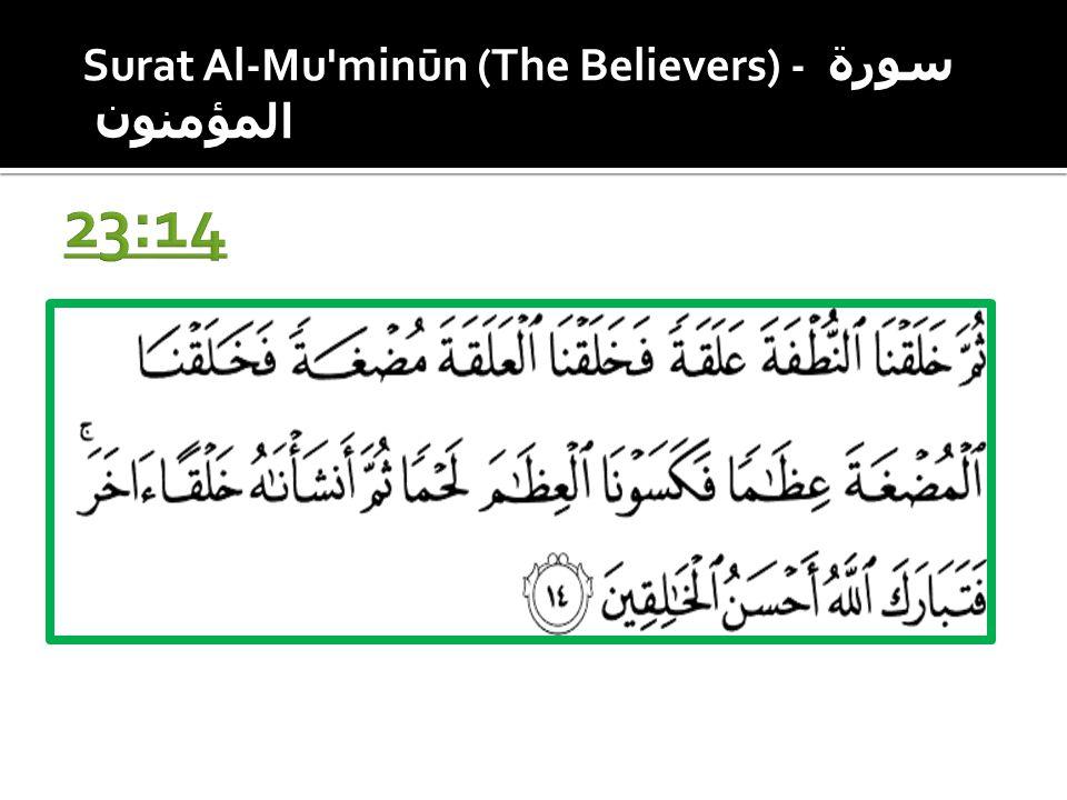 Surat Al-Mu minūn (The Believers) - سورة المؤمنون