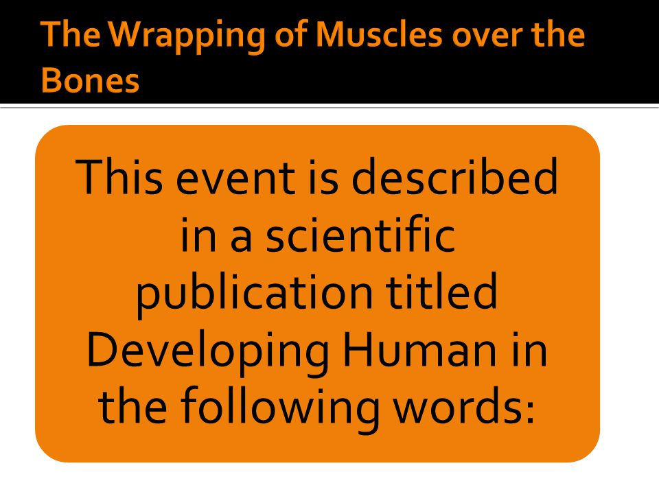 This event is described in a scientific publication titled Developing Human in the following words: