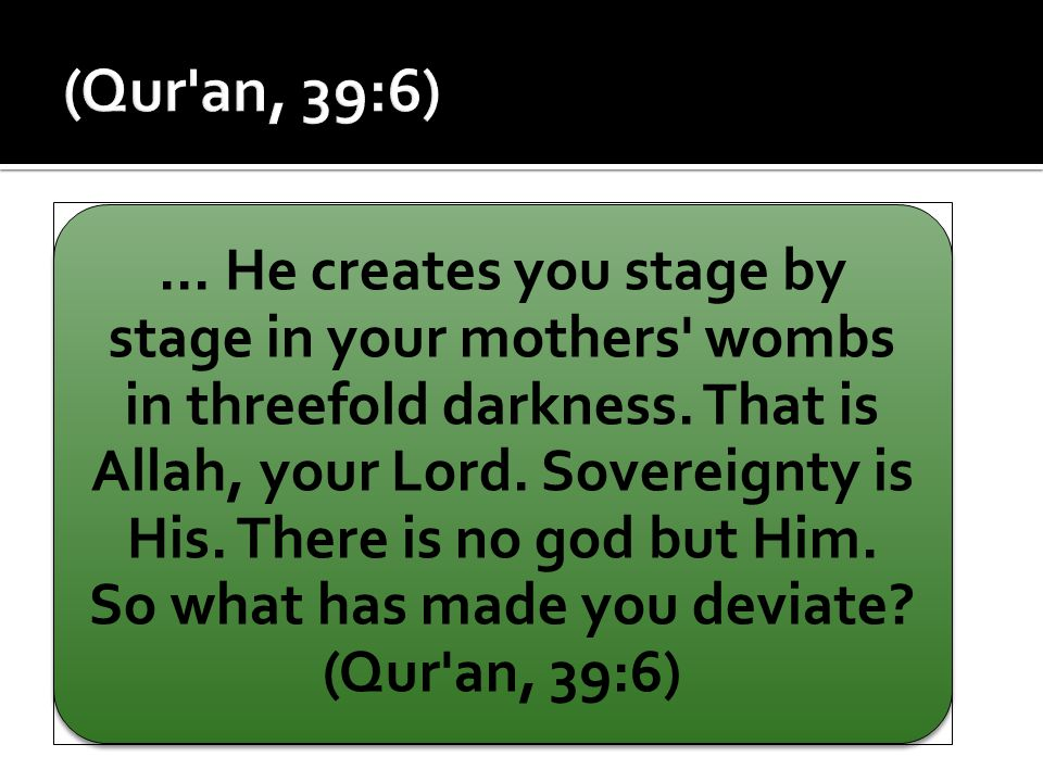 ... He creates you stage by stage in your mothers' wombs in threefold darkness. That is Allah, your Lord. Sovereignty is His. There is no god but Him.