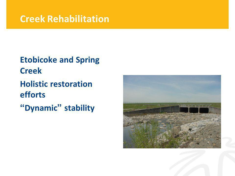 Creek Rehabilitation Etobicoke and Spring Creek Holistic restoration efforts Dynamic stability