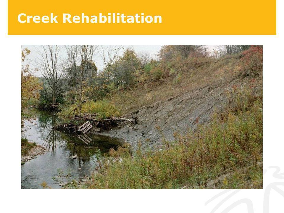 Creek Rehabilitation
