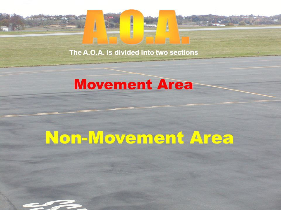 Non-Movement Area Movement Area The A.O.A. is divided into two sections