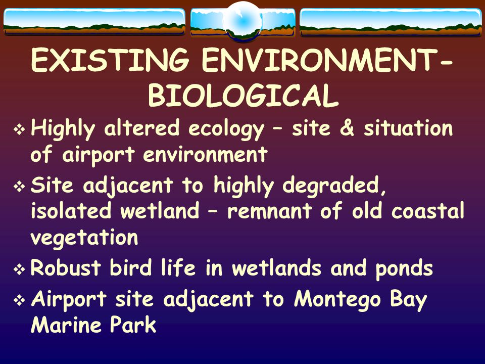 EXISTING ENVIRONMENT- BIOLOGICAL Highly altered ecology – site & situation of airport environment Site adjacent to highly degraded, isolated wetland – remnant of old coastal vegetation Robust bird life in wetlands and ponds Airport site adjacent to Montego Bay Marine Park