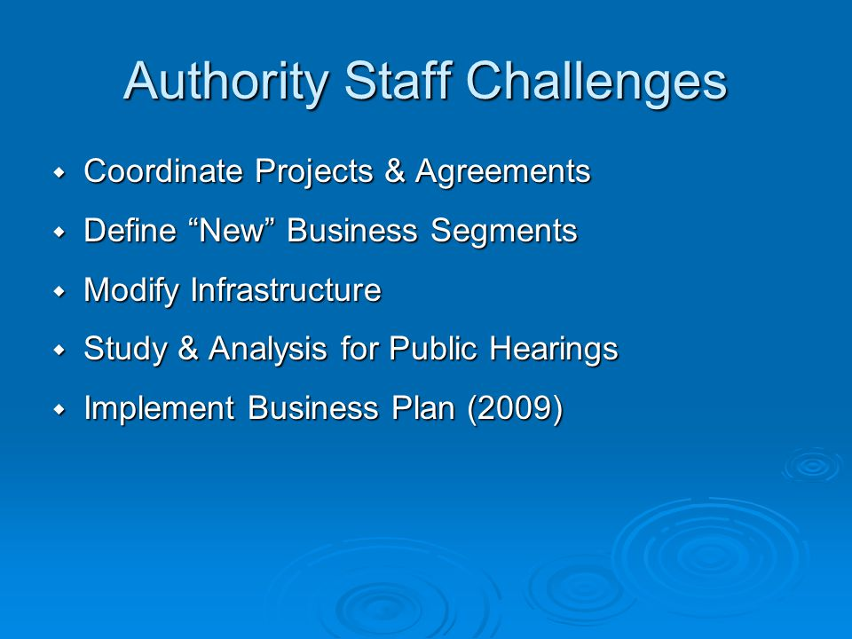 Authority Staff Challenges Coordinate Projects & Agreements Coordinate Projects & Agreements Define New Business Segments Define New Business Segments Modify Infrastructure Modify Infrastructure Study & Analysis for Public Hearings Study & Analysis for Public Hearings Implement Business Plan (2009) Implement Business Plan (2009)