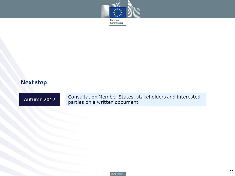 Next step 29 Autumn 2012 Consultation Member States, stakeholders and interested parties on a written document
