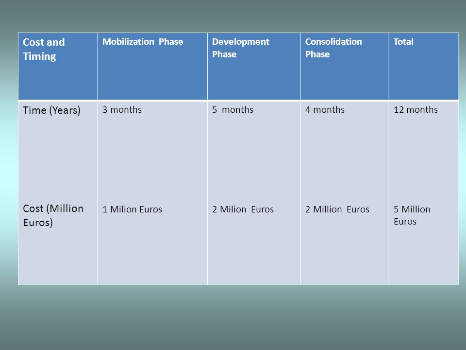 Cost and Timing Mobilization PhaseDevelopment Phase Consolidation Phase Total Time (Years) Cost (Million Euros) 3 months 1 Milion Euros 5 months 2 Milion Euros 4 months 2 Million Euros 12 months 5 Million Euros