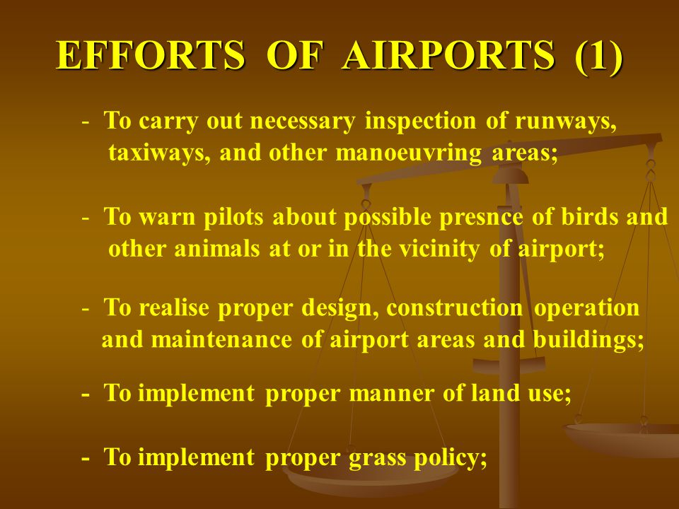 EFFORTS OF AIRPORTS (1) - To carry out necessary inspection of runways, taxiways, and other manoeuvring areas; - To warn pilots about possible presnce of birds and other animals at or in the vicinity of airport; - To realise proper design, construction operation and maintenance of airport areas and buildings; - To implement proper manner of land use; - To implement proper grass policy;