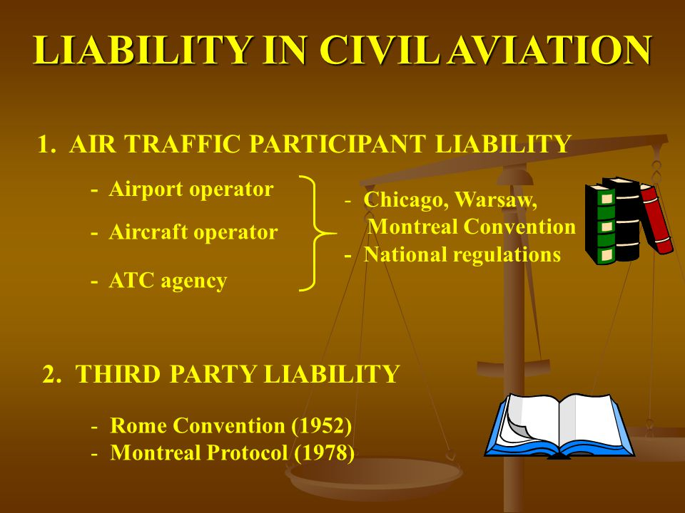 LIABILITY IN CIVIL AVIATION 1. AIR TRAFFIC PARTICIPANT LIABILITY 2.