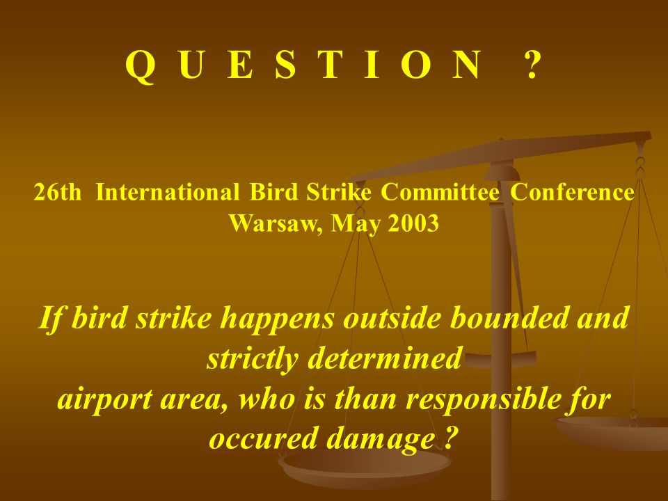 26th International Bird Strike Committee Conference Warsaw, May 2003 Q U E S T I O N .