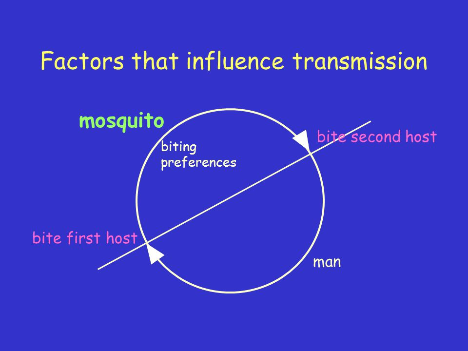Factors that influence transmission mosquito man bite first host bite second host biting preferences