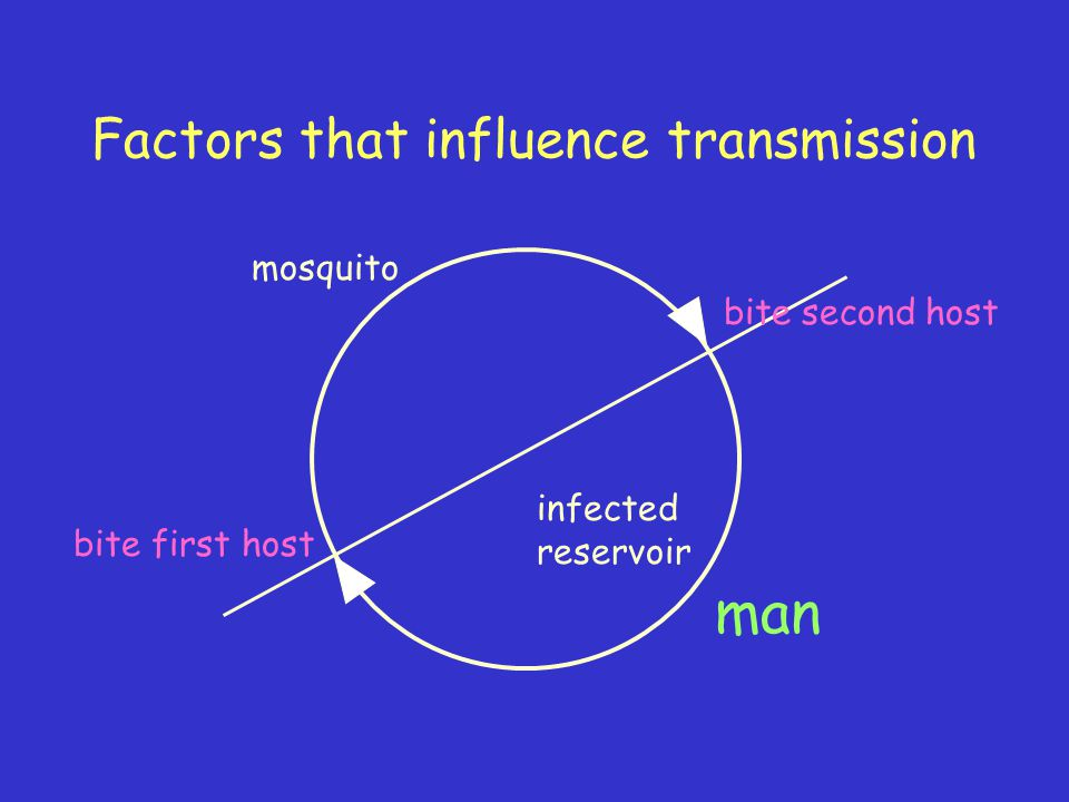 Factors that influence transmission mosquito man bite first host bite second host infected reservoir