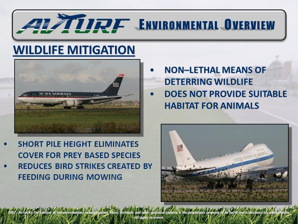 WILDLIFE MITIGATION 2007 - AvTurf©.