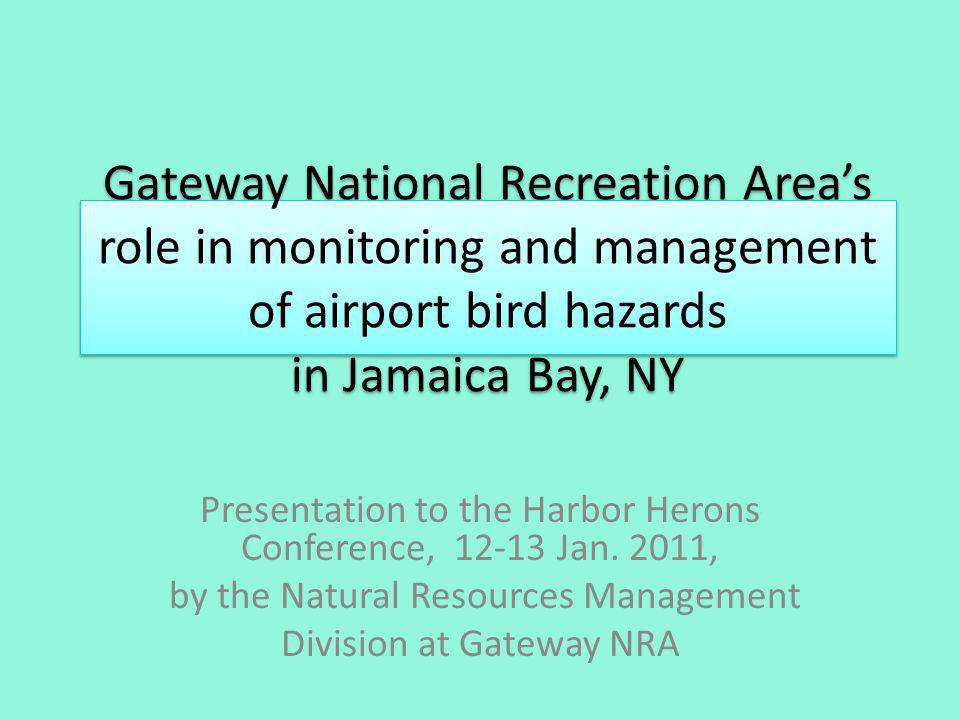 Gateway National Recreation Areas role in monitoring and management of airport bird hazards in Jamaica Bay, NY Presentation to the Harbor Herons Conference, 12-13 Jan.