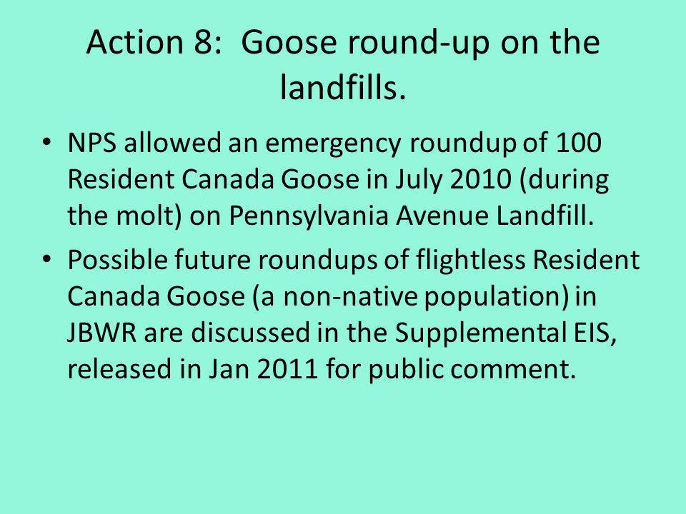 Action 8: Goose round-up on the landfills. NPS allowed an emergency roundup of 100 Resident Canada Goose in July 2010 (during the molt) on Pennsylvani