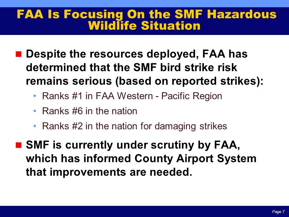 Page 7 FAA Is Focusing On the SMF Hazardous Wildlife Situation Despite the resources deployed, FAA has determined that the SMF bird strike risk remains serious (based on reported strikes): Ranks #1 in FAA Western - Pacific Region Ranks #6 in the nation Ranks #2 in the nation for damaging strikes SMF is currently under scrutiny by FAA, which has informed County Airport System that improvements are needed.