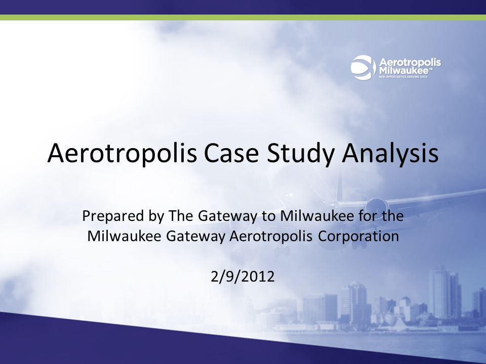 Aerotropolis Governance Structures Other communities examined in this document are not as easily categorized.